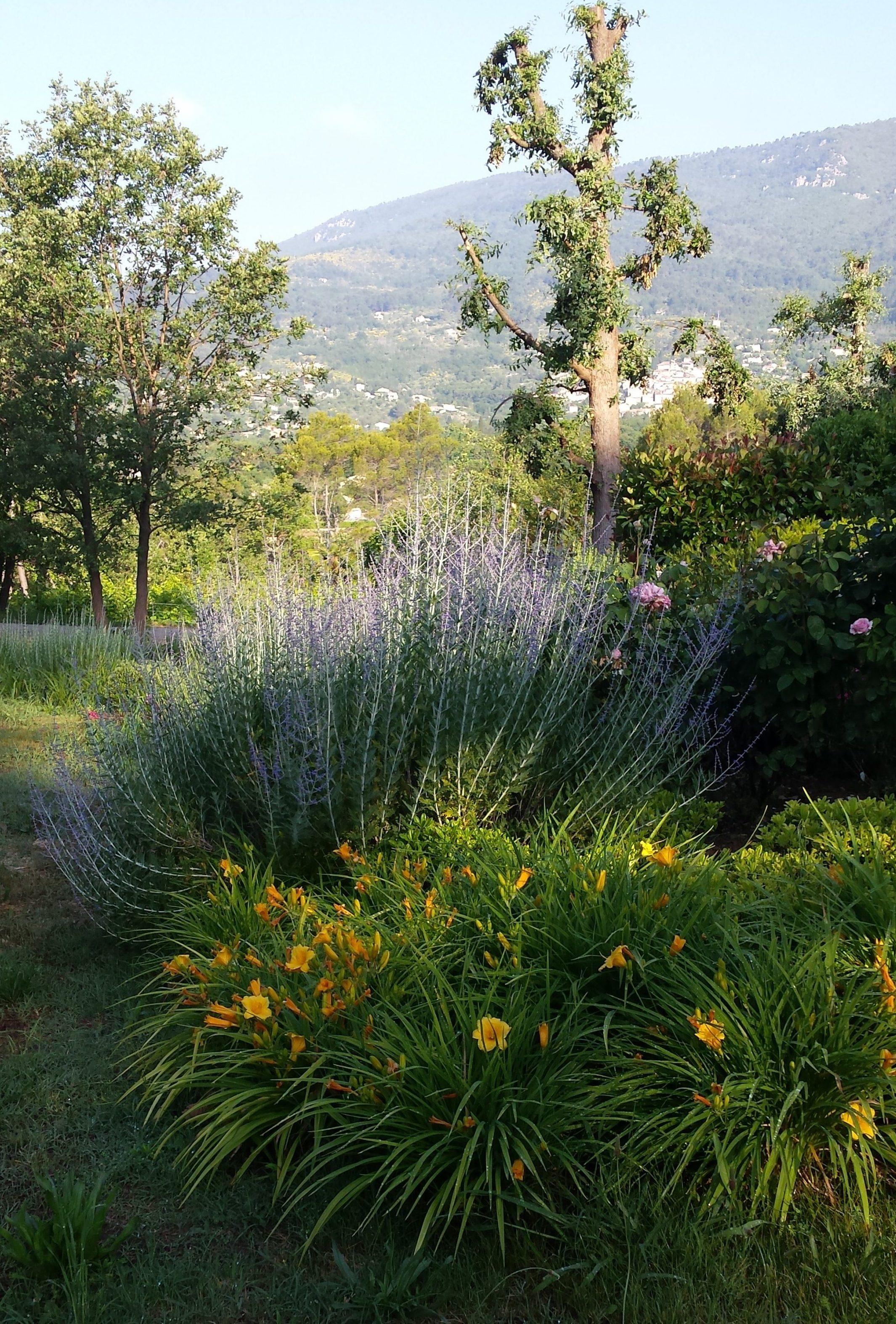 Nature espaces paysages nep cr ation entretien de jardin for Entretien de jardin